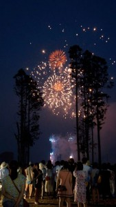 『LIGHT UP NIPPON 東北から全国へ想いを届け、日本を、明るく、元気に。