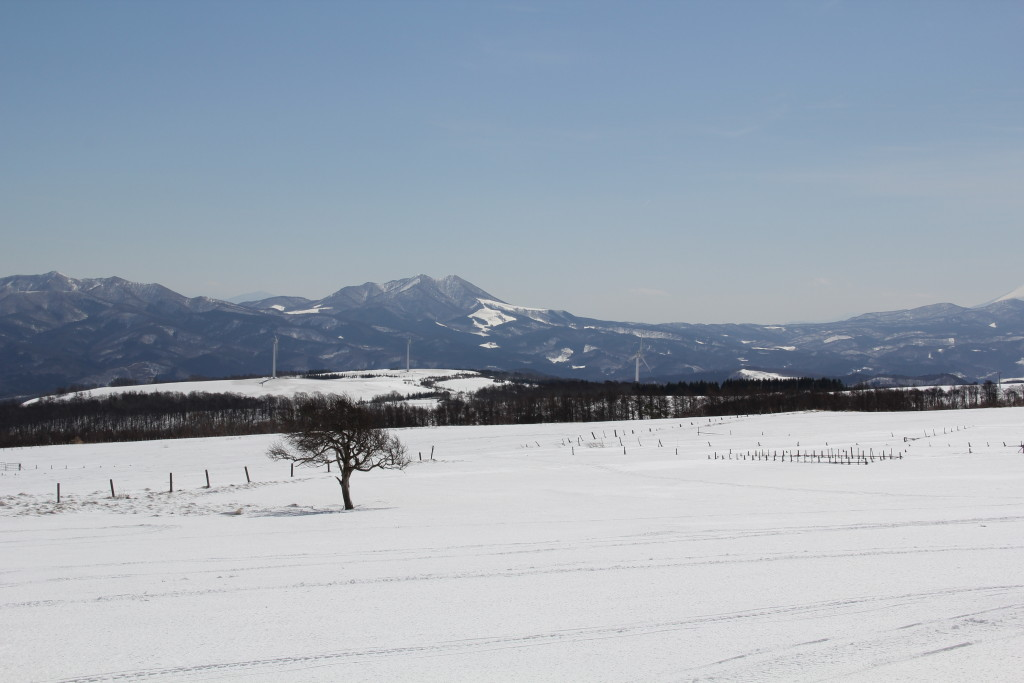 inaniwa-winter2