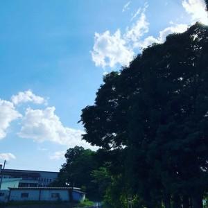 今日は暑くて、青空でした。
