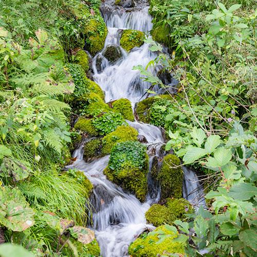 稲庭岳 岩誦坊の湧き水