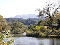 馬渕川河畔