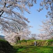 史跡九戸城跡が「続日本100名城」に選定されました!!